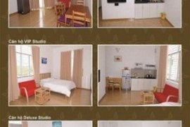 Cho thuê căn hộ 1 phòng ngủ tại HQC Royal Tower, Quận 7, Hồ Chí Minh