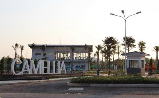 Camellia - Townhouse