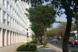 Cho thuê nhà đất thương mại  tại Tân Phong, Quận 7, Hồ Chí Minh